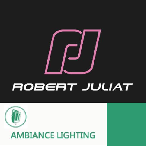 AMBIANCE LIGHTING 情境燈